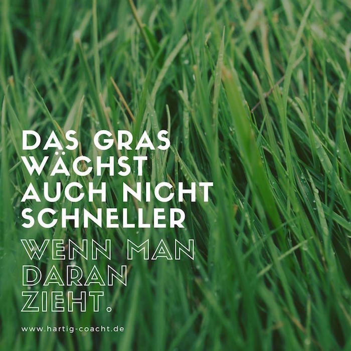 Fotografik mit Zitat: Das Gras wächst auch nicht schneller, wenn man daran zieht