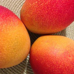 Drei reife, rotbäckige Mangos